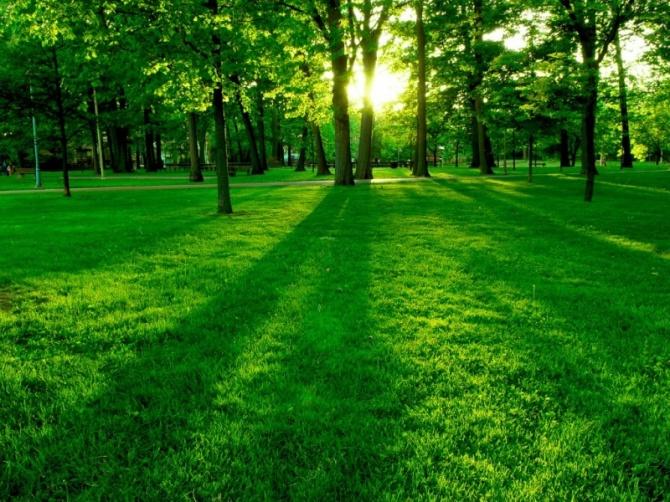greenpark1024-x-7681