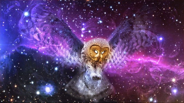 Wings-of-possibility-owl