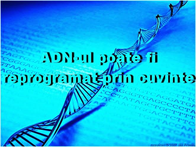 ADN-reprogramare-cuvinte