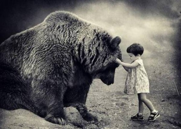 bear-child-378-600x426