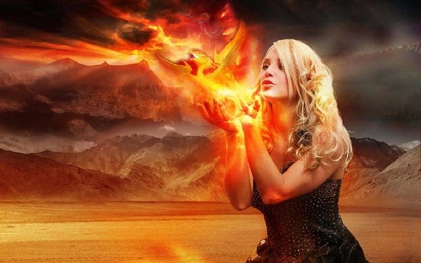 pasarea-phoenix-1_8fc9644557a320