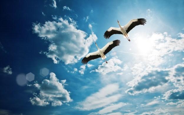 Cele 20 de caracteristici ale unei persoane sănătoase din punct de vedere spiritual